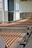 Produktion av kakor på transportör royaltyfri bild