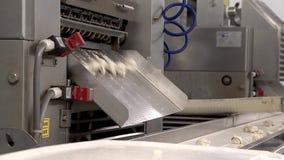 Produktion av klimpar, ravioli för installation för tillverkning av, mat 9 arkivfilmer