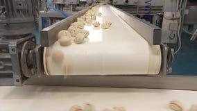 Produktion av klimpar, ravioli för installation för tillverkning av, mat 4 stock video