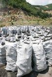 Produktion av kol för fyrpannor och en grillfest Den 3rd fullvuxna hankronhjorten Arkivfoto
