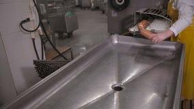 Produktion av korvar Arbetaren fungerar kött som bearbetar utrustning på ett kött som bearbetar fabriken lager videofilmer