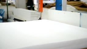 Produktion av madrassen med att använda maskinen på växten visas closeupen stock video