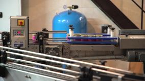 Produktion av pepparroten Linje av produktion av pepparroten Livsmedelsindustri transportör Produktionslinje Mat bevarande arkivfilmer