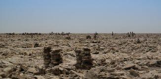 Produktion av salt på Karum sjön, Danakil, avlägsna Etiopien Arkivfoton