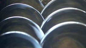 Produktion des Rapsöls, Verarbeitung des Ölsaatrapssamens, Versorgung Rapsölsamen zur Presse kalten Drückens stock video