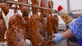 Produktion von Fleischzartheit vom Schweinefleisch und vom Rindfleisch Kalte Lachse in der Marinade des Paprikas besprühen mit Sa stock video footage