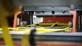 Produktion von Wegwerfkästen Eiern im Markt Arbeiten in der Anlage stock video footage
