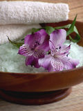 produkty kąpielowych Zdjęcie Royalty Free