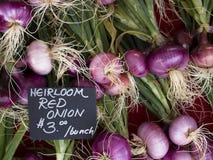 Produkty spożywcze - cebuli organicznie czerwony tło Obraz Royalty Free