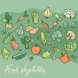 Produrre alimento vegetariano, caffè, stampa e più Stile del vegano Modello del vegano illustrazione di stock