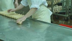 Produrre le salsiccie, produzione alimentare nella fabbrica stock footage