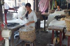 Produrre le tagliatelle di riso Immagine Stock