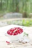 Produto de Autumn Season Pomegranate fotos de stock royalty free