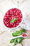 Produto de Autumn Season Pomegranate imagem de stock royalty free