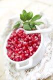 Produto de Autumn Season Pomegranate foto de stock