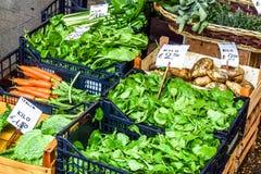 Produto, ervas e especiarias vegetais, à terra no mercado de Rialto, um mercado dos fazendeiros em Veneza, Itália foto de stock
