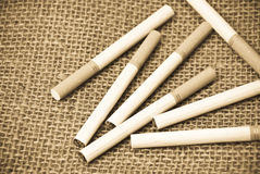 Produto final da colheita do tabaco Imagens de Stock Royalty Free