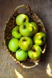 Produto local das bio maçãs orgânicas maduras verdes na colheita de madeira rústica Autumn Fall Thanksgiving da tabela da cesta d Imagem de Stock