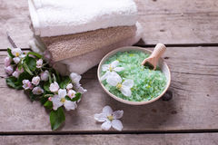 Produto orgânico dos termas ou do bem-estar Foto de Stock Royalty Free