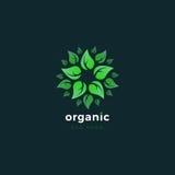 Produto orgânico Logotipo verde de Eco Molde do projeto do logotipo natural do alimento Fotos de Stock