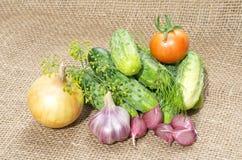 Produto-vegetais frescos de vegetables imagens de stock royalty free
