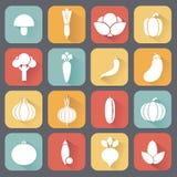 Produto-vegetais frescos de vegetables Conceito da dieta e do alimento biológico Ilustração do vetor Fotografia de Stock Royalty Free