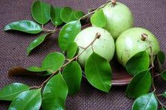 Produtos agrícolas de Vietname, fruto do leite, maçã de estrela Imagens de Stock
