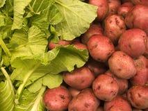 Produtos agrícolas III foto de stock