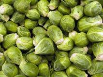 Produtos agrícolas VIII imagens de stock royalty free