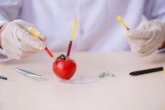 Produtos alimentares de teste do perito masculino da nutrição no laboratório foto de stock royalty free