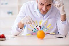 Produtos alimentares de teste do perito masculino da nutrição no laboratório imagem de stock