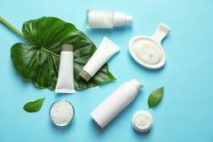 Produtos cosméticos dos cuidados com a pele diferentes com folhas verdes imagens de stock