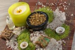 Produtos da natureza dos termas Sal do mar, camomila, sabão e óleo aromático Fotografia de Stock