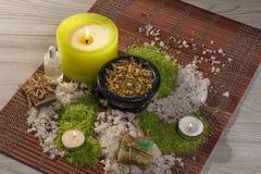 Produtos da natureza dos termas Sal do mar, camomila, sabão e óleo aromático Imagem de Stock