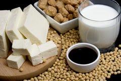 Produtos da soja Imagens de Stock Royalty Free