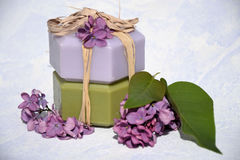 Produtos de beleza .cosmetic Fotografia de Stock