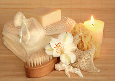Produtos de beleza naturais Fotografia de Stock Royalty Free