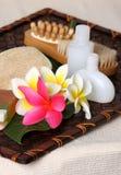 Produtos de beleza tropicais dos termas do dia Fotografia de Stock