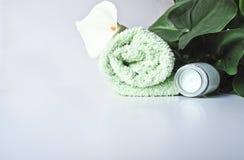 Produtos de Bodycare Fotografia de Stock Royalty Free