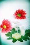 Produtos de cuidado de pele   Imagens de Stock