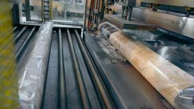 Produtos de empacotamento na fábrica, envolvendo o papel de parede no celofane Transporte moderno vídeos de arquivo