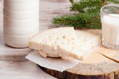 Produtos de leite frescos: queijo e leite Foto de Stock Royalty Free