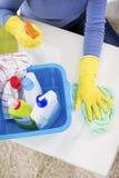 Produtos de limpeza Imagens de Stock Royalty Free