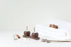 Produtos de Welness no fundo de madeira claro Fotos de Stock Royalty Free