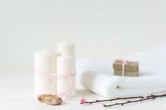 Produtos de Welness no fundo de madeira claro Imagem de Stock Royalty Free