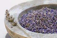 Produtos do cuidado do Wellness com sementes da alfazema Fotografia de Stock Royalty Free