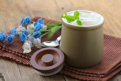 Produtos lácteos (creme ácido, yogurt,) Fotografia de Stock Royalty Free