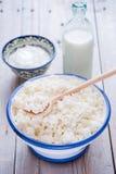Produtos lácteos frescos Imagem de Stock Royalty Free