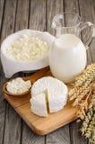 Produtos lácteos frescos Leite e requeijão com trigo no fundo de madeira rústico fotos de stock royalty free