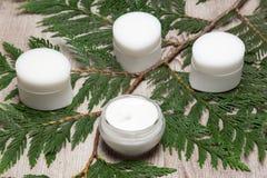 Produtos naturais dos cuidados com a pele para mulheres imagens de stock royalty free